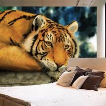 Wallpaper Tiger
