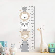 Height measure Animals with stars