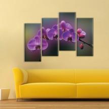 Grana orhideje